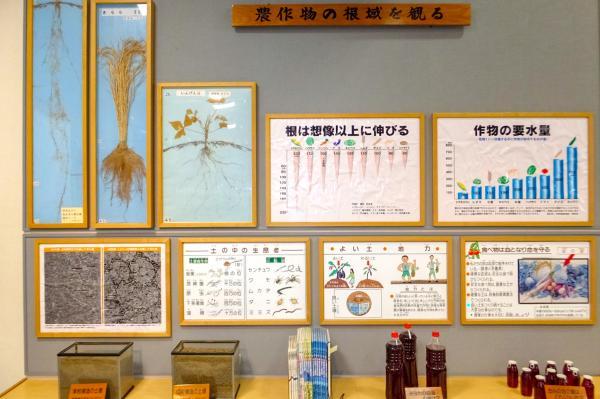 土と自然環境